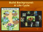build background a life cycle