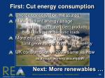 first cut energy consumption
