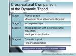 cross cultural comparison of the dynamic tripod1