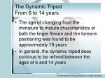 the dynamic tripod from 6 to 14 years