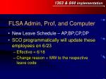 flsa admin prof and computer