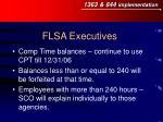 flsa executives8