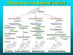 steroids of the adrenal cortex