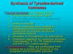 synthesis of tyrosine derived hormones