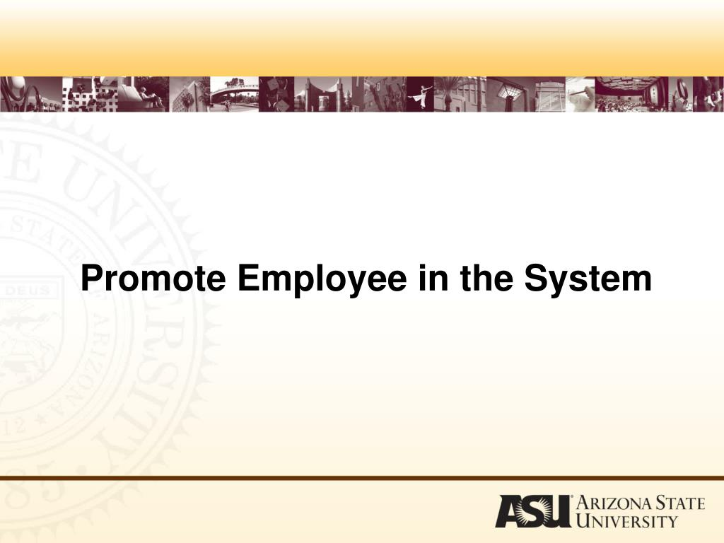 Promote Employee in the System
