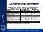 labour market absorbtion