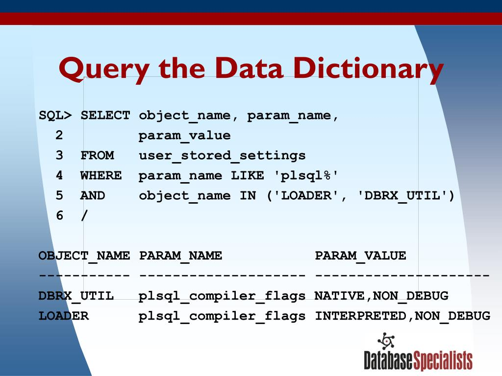 Query the Data Dictionary