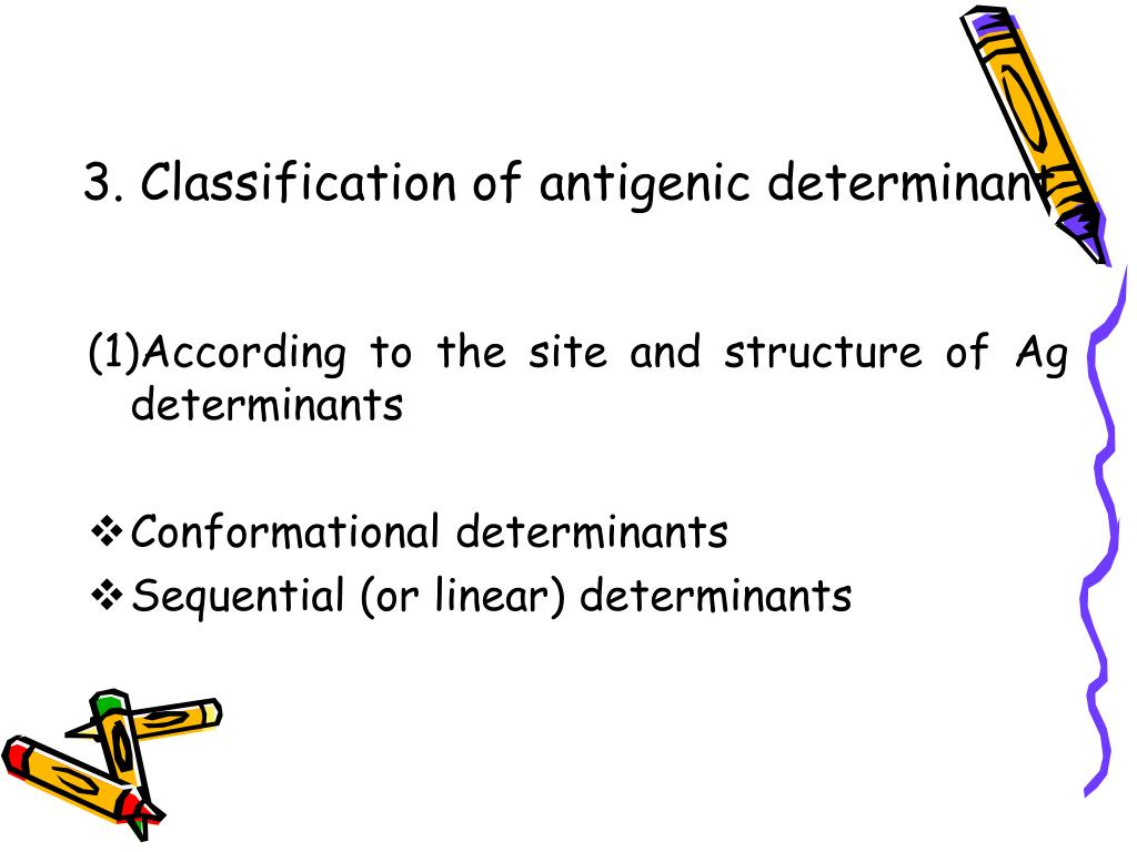 3. Classification of antigenic determinant