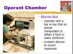 operant chamber