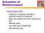 schedules of reinforcement1