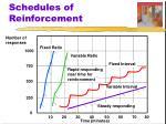 schedules of reinforcement5