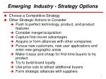 emerging industry strategy options