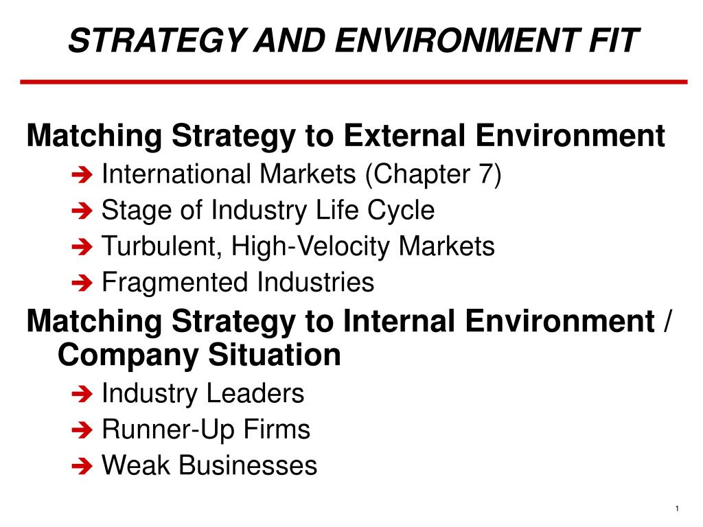 strategy and environment fit l.