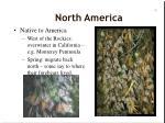 north america49