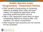 public service loan forgiveness important points