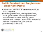 public service loan forgiveness important points51