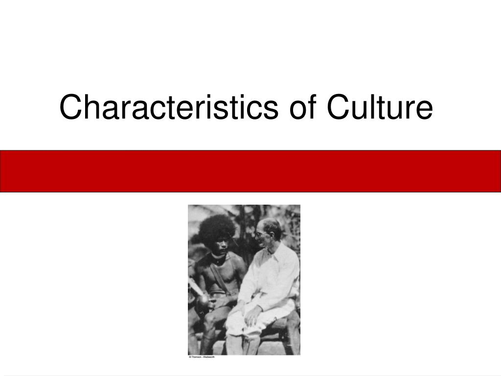characteristics of culture l.