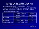 paired end duplex cloning22