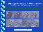 tem magnetic images of nife elements courtesy of dr k kirk university of glasgow
