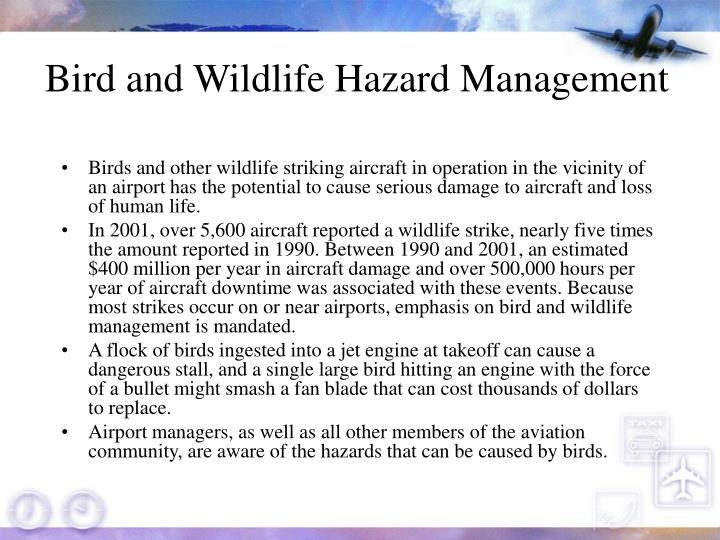bird and wildlife management at airports Airport wildlife management illustrates two perfect examples of the need for this wide-ranging culture of safety under sms - strike reporting and reporting the presence of wildlife for strike reporting, knowing what numbers and species of birds are being struck at an airport assists biologists and.