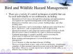 bird and wildlife hazard management42