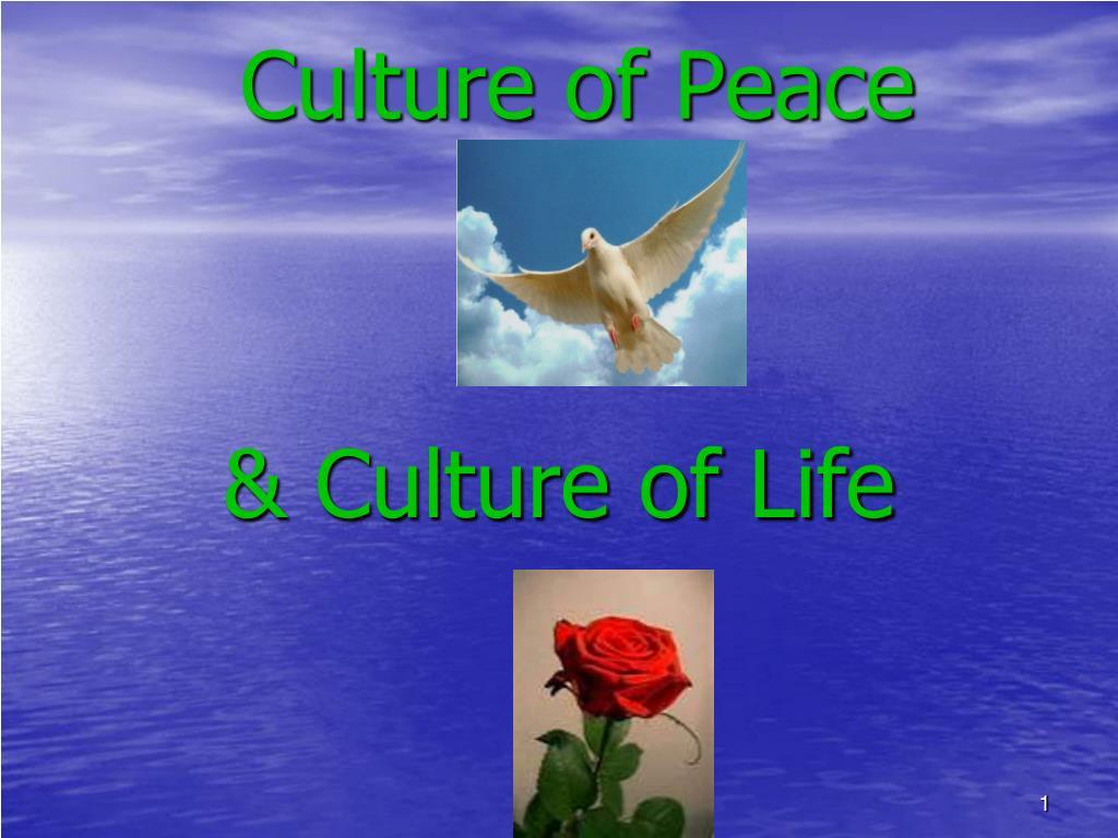 culture of peace l.