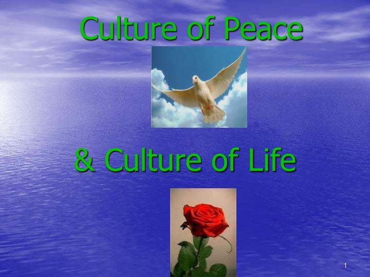 culture of peace n.