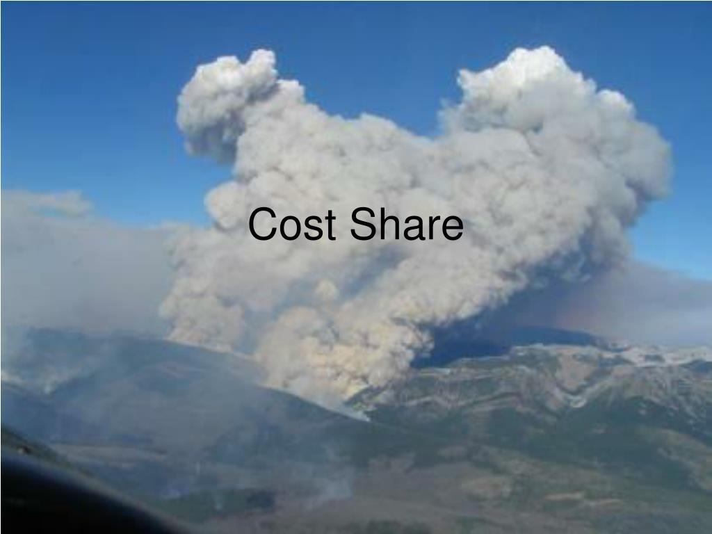 cost share l.