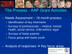 the process aap grant activities