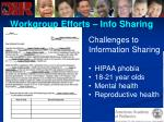 workgroup efforts info sharing69