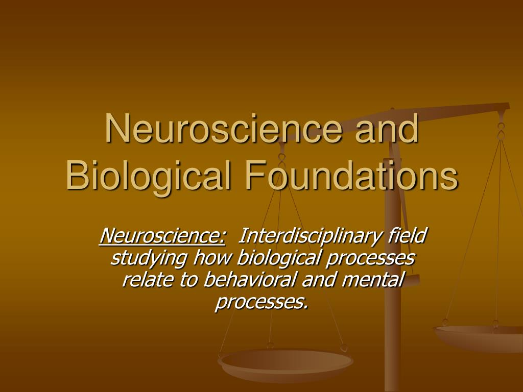 neuroscience and biological foundations l.