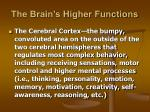 the brain s higher functions