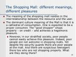 the shopping mall different meanings different pleasures