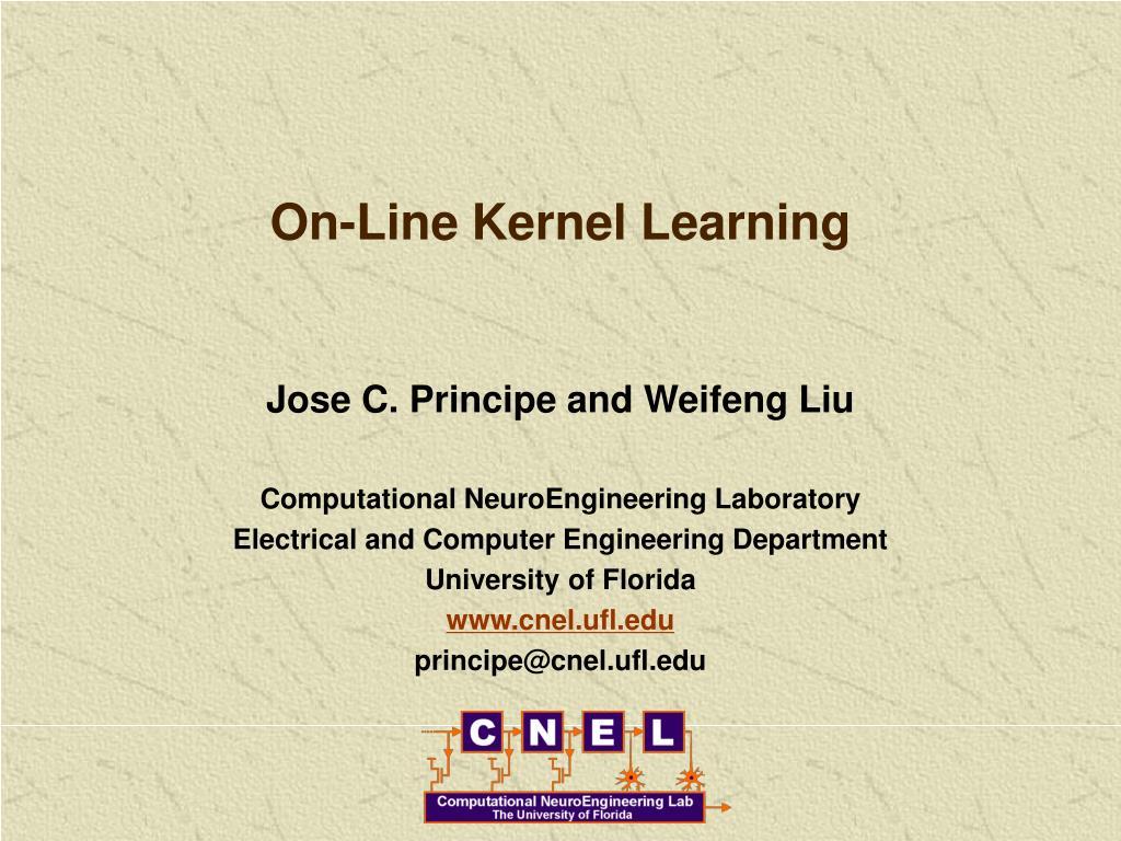 on line kernel learning l.