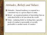 attitudes beliefs and values