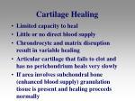 cartilage healing