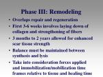 phase iii remodeling