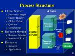 process structure