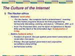 the culture of the internet29