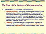 the rise of the culture of consummerism23