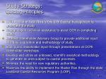 study strategy guiding principles