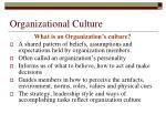 organizational culture2