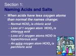 section 1 naming acids and salts32