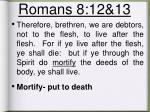 romans 8 12 13