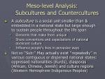 meso level analysis subcultures and countercultures