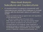 meso level analysis subcultures and countercultures21