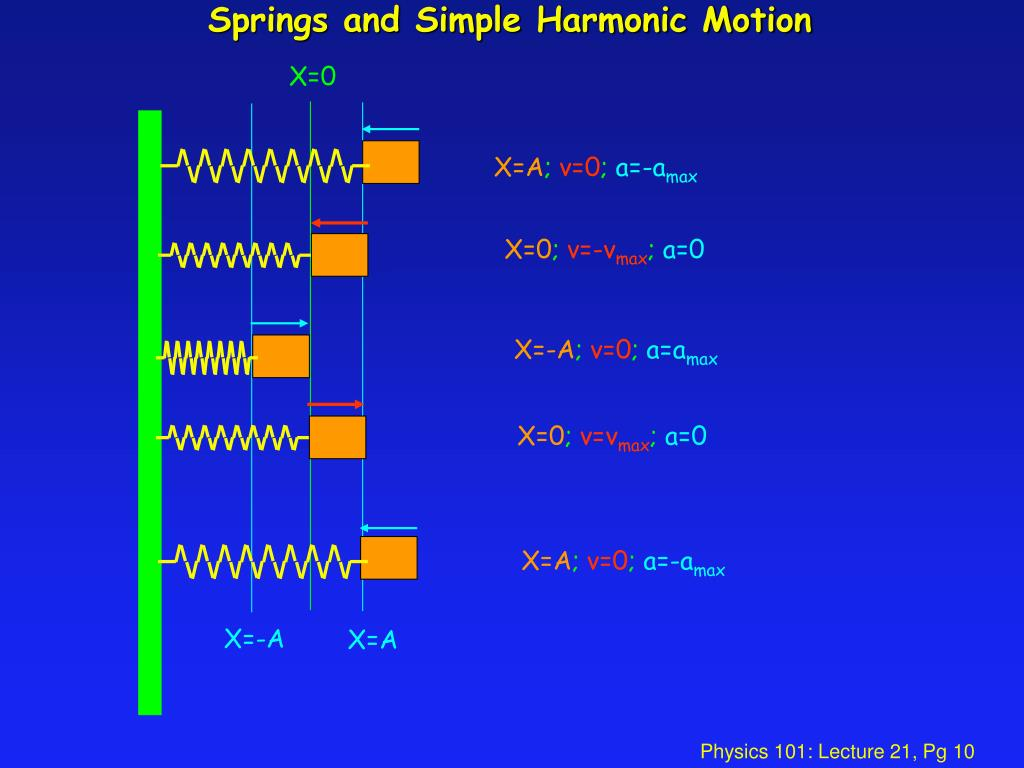 Springs and Simple Harmonic Motion
