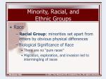 minority racial and ethnic groups5