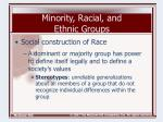 minority racial and ethnic groups8
