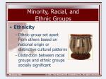 minority racial and ethnic groups9